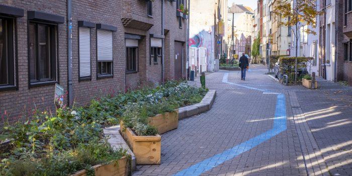 groene straten