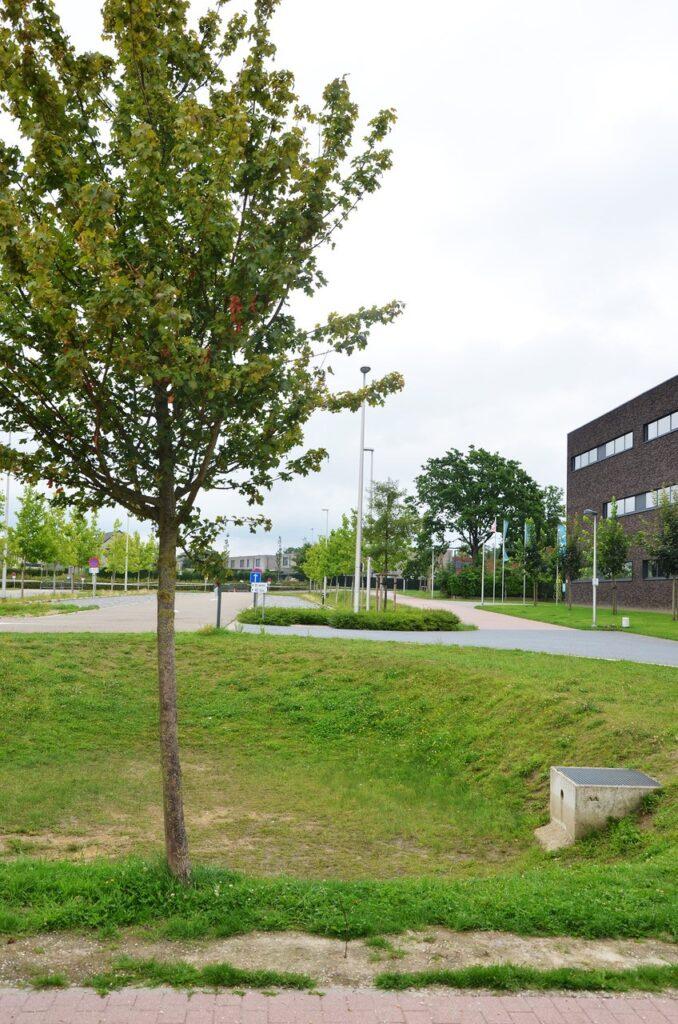 sportcomplex herk-de-stad