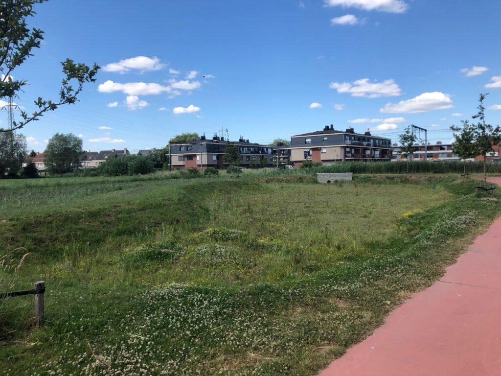 schelle tuinwijk